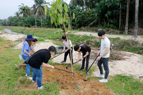 Pledge And Plant A Tree Programme 2019-02